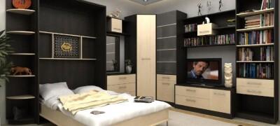 Описание и особенности шкаф-кроватей от IKEA