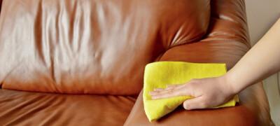 Как ухаживать за кожаной мебелью в домашних условиях