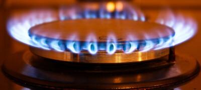 Что такое газ контроль конфорок и какой принцип его работы
