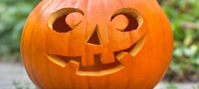 Изделия из тыквы на Хэллоуин(Halloween)