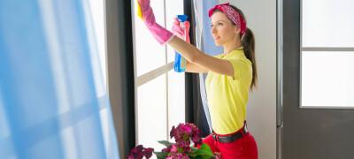 Чем и как правильно помыть окна в домашних условиях