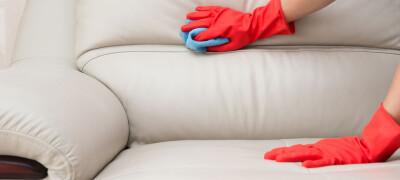 Как ухаживать за диваном из экокожи