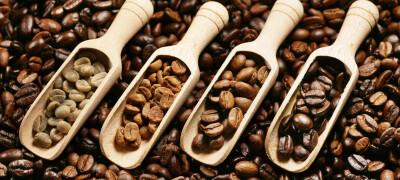 Выбор лучшего кофе в зернах