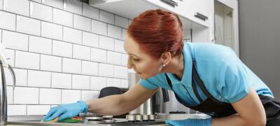 Как и чем можно отмыть жир на кухонной мебели