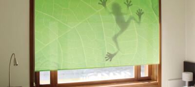 Печать и рисунки на рулонных шторах
