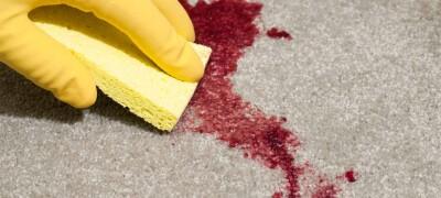 Чем и как можно омыть кровь с дивана в зависимости от материала обивки