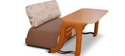 Виды и выбор дивана-стола