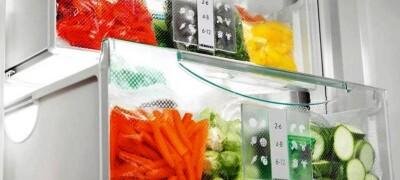 Температура в холодильнике для хранения продуктов