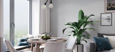 Маленькая гостиная с обеденным столом