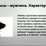 год крысы характеристика мужчины