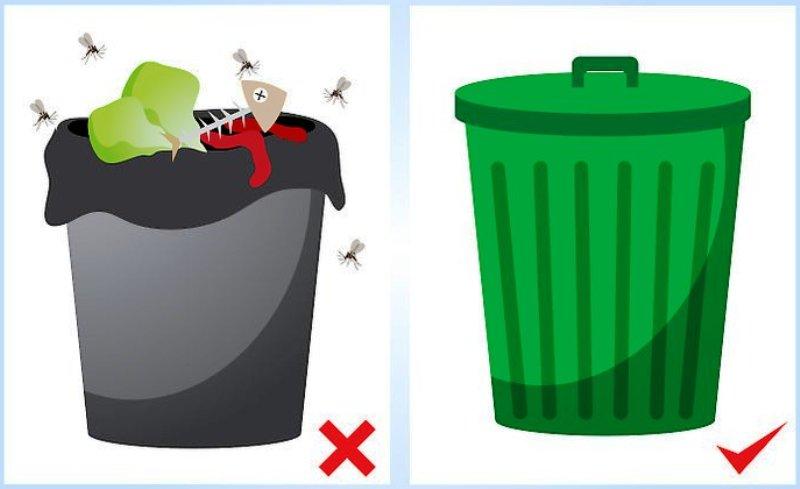 мошки и мусор