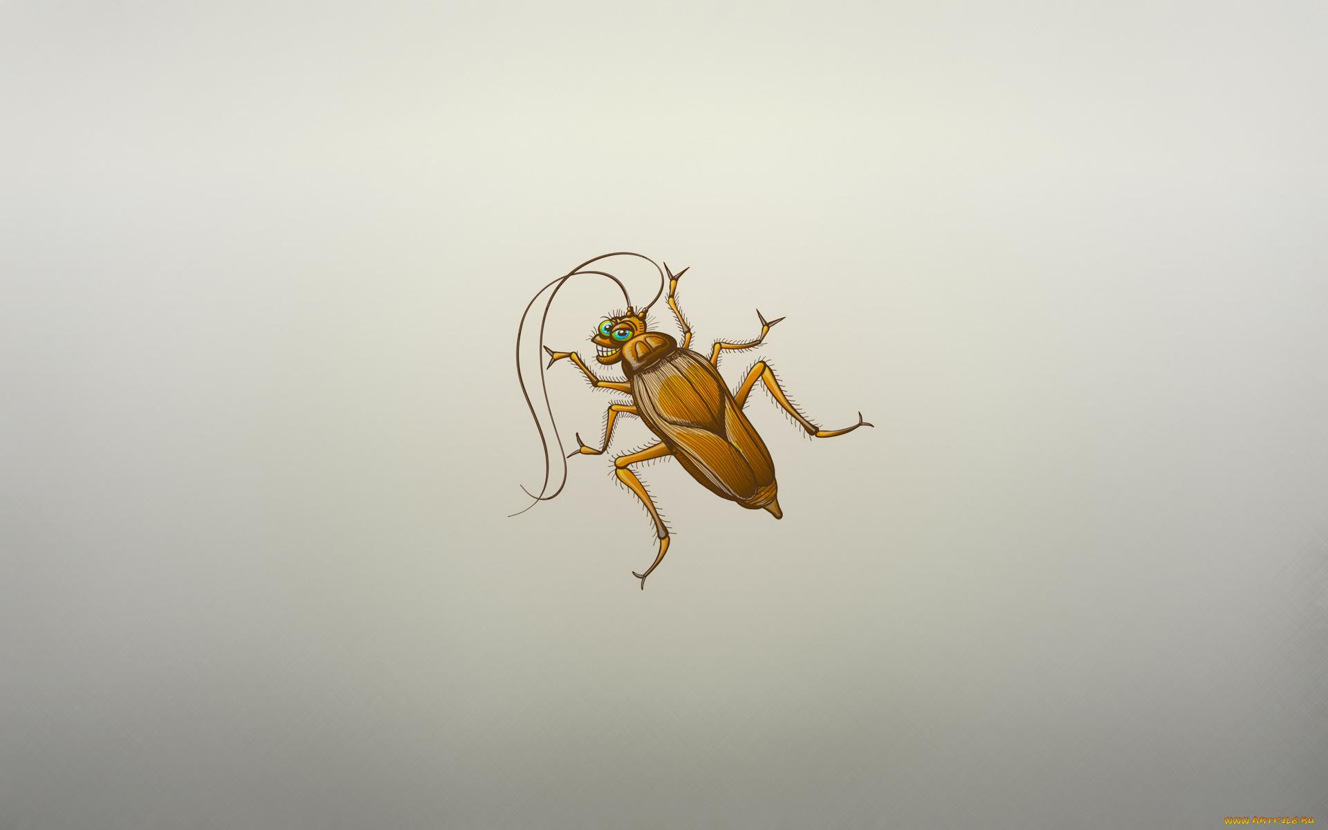 нарисованный таракан
