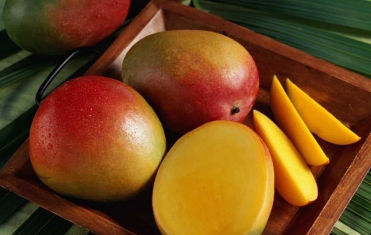 сорт манго