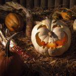 тыква на хэллоуин фото декора