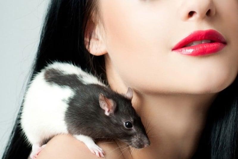 женщина в год крысы