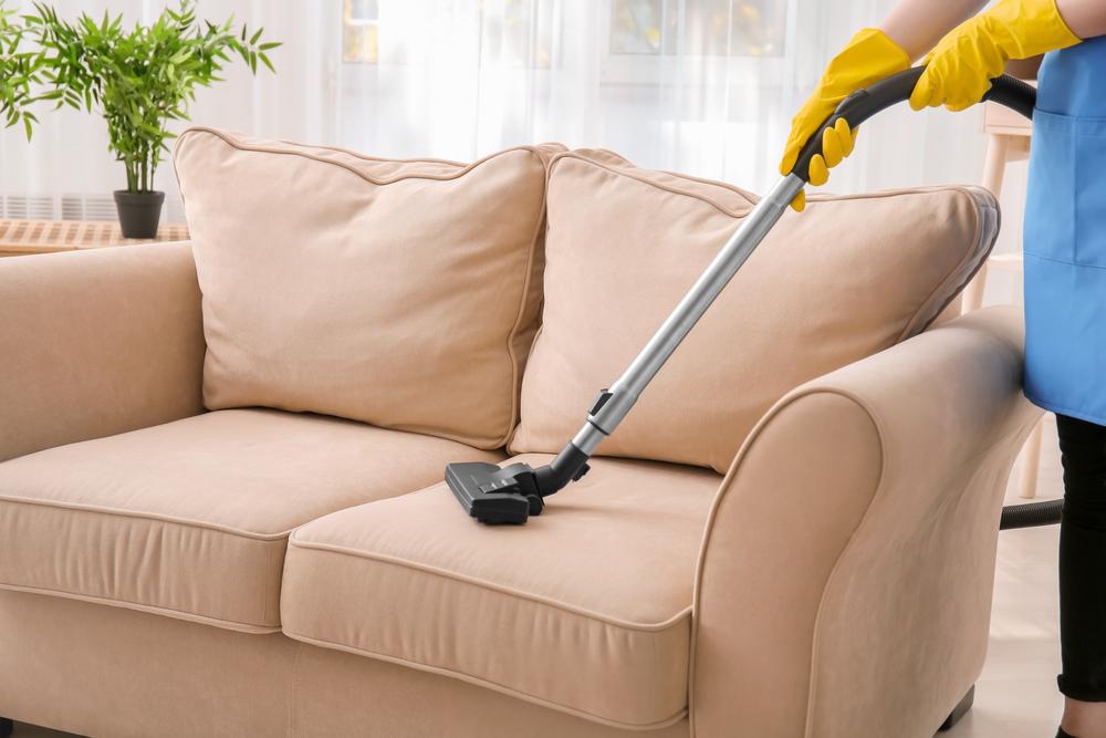 Чистка дивана откошачьей шерсти
