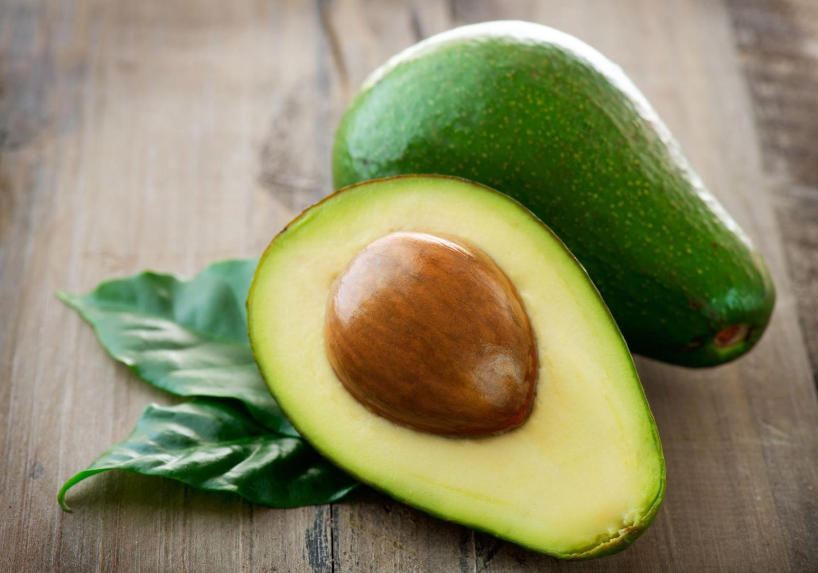 авокадо фото в разрезе