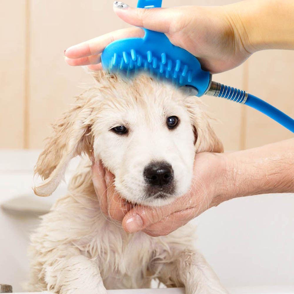 собаку чистят щеткой