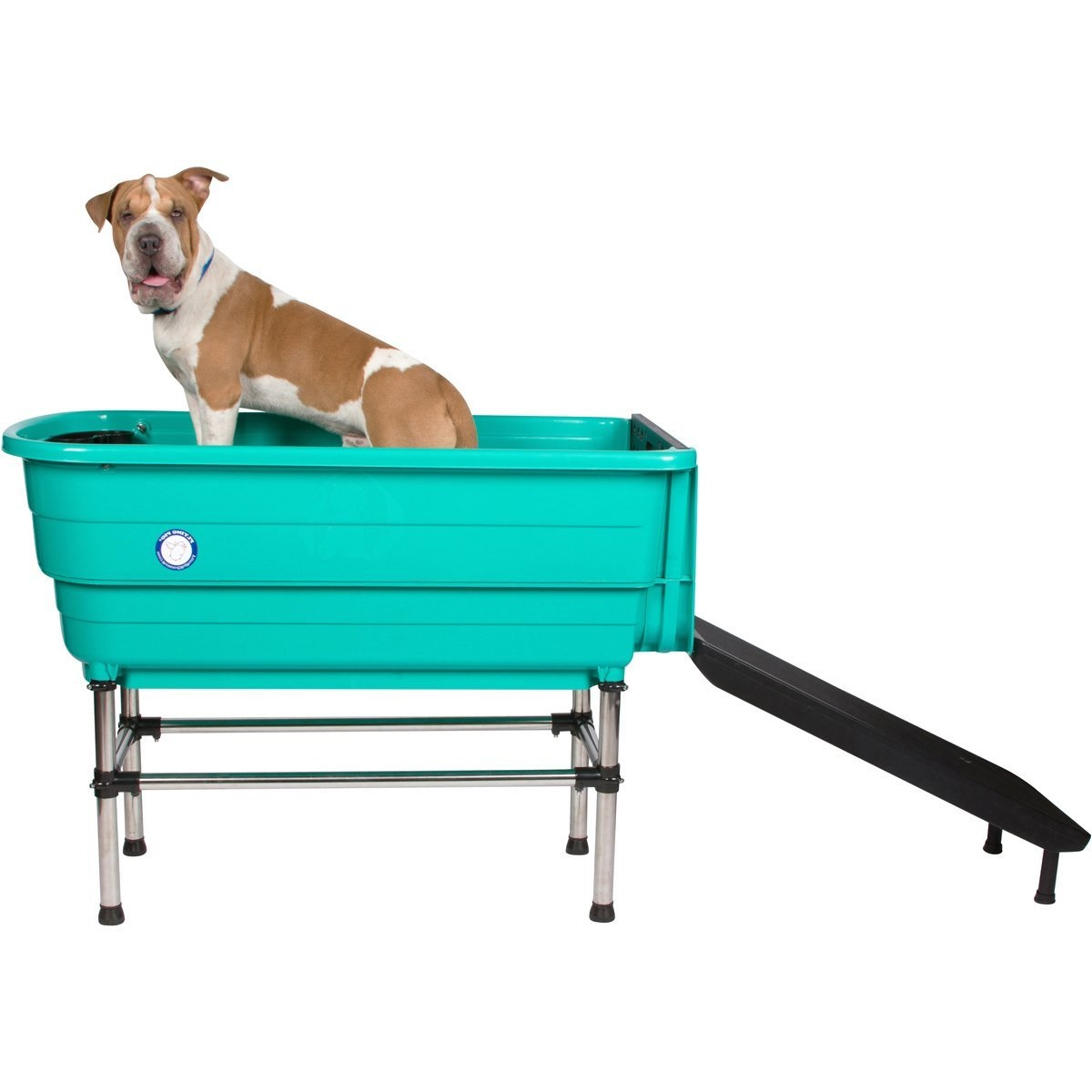 собака в зеленой ванне
