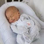 кокон для новорожденных
