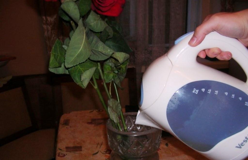 как оживить цветы кипятком