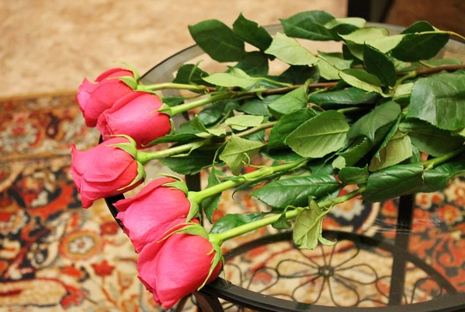розы дома