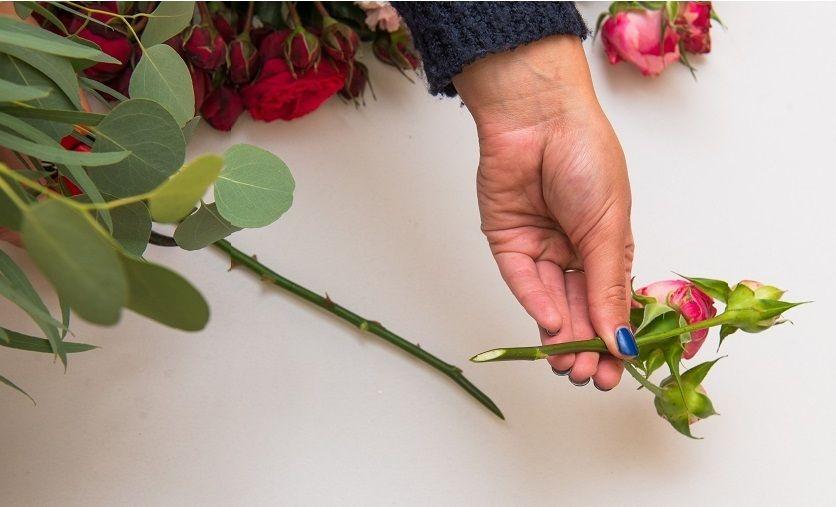 срезать стебли цветов