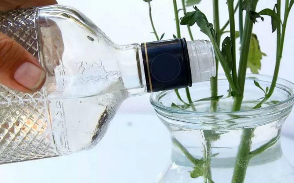 уксус для цветов в вазе