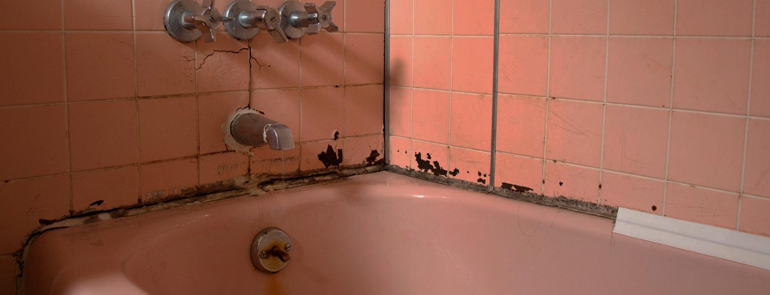 грибки и плесень в ванной комнате
