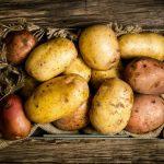 картофель для окон