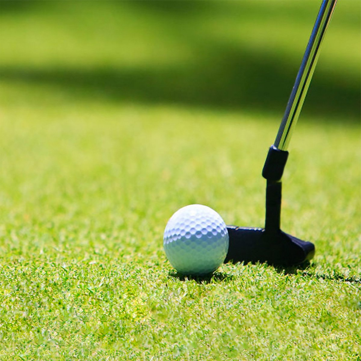 газон для гольфа спортивный