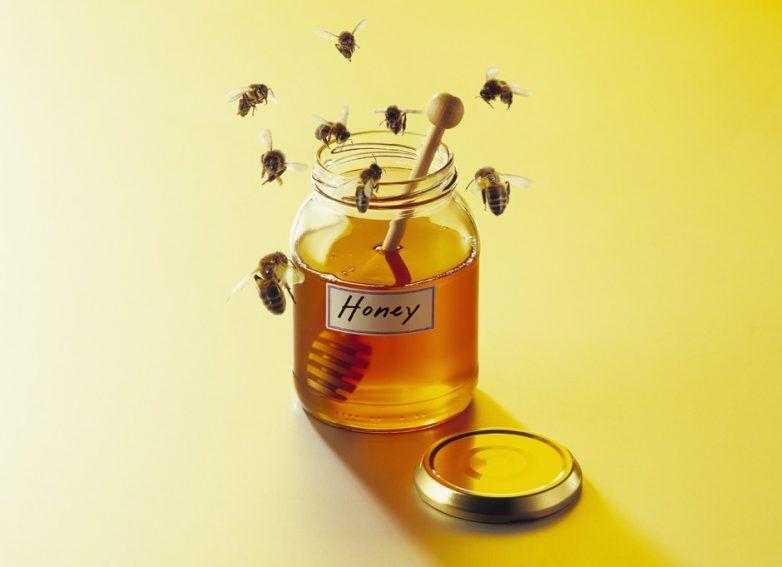 выдержка меда