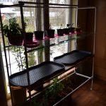 стеллаж для выращивания рассады фото декора