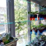 стеллаж для выращивания рассады декор идеи