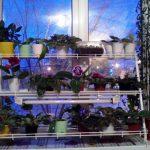 стеллаж для выращивания рассады виды