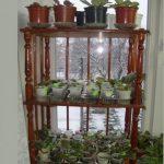 стеллаж для выращивания рассады обзор