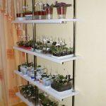 стеллаж для выращивания рассады виды дизайна
