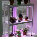 стеллаж для выращивания рассады дизайн фото