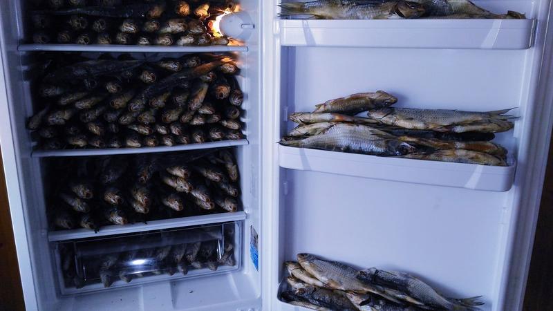 вяленая рыба в холодильнике