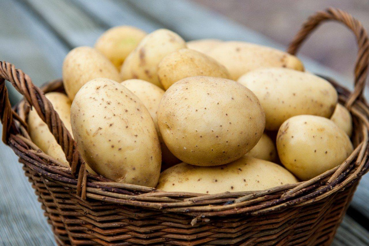 На рабочий стол картинки картошка