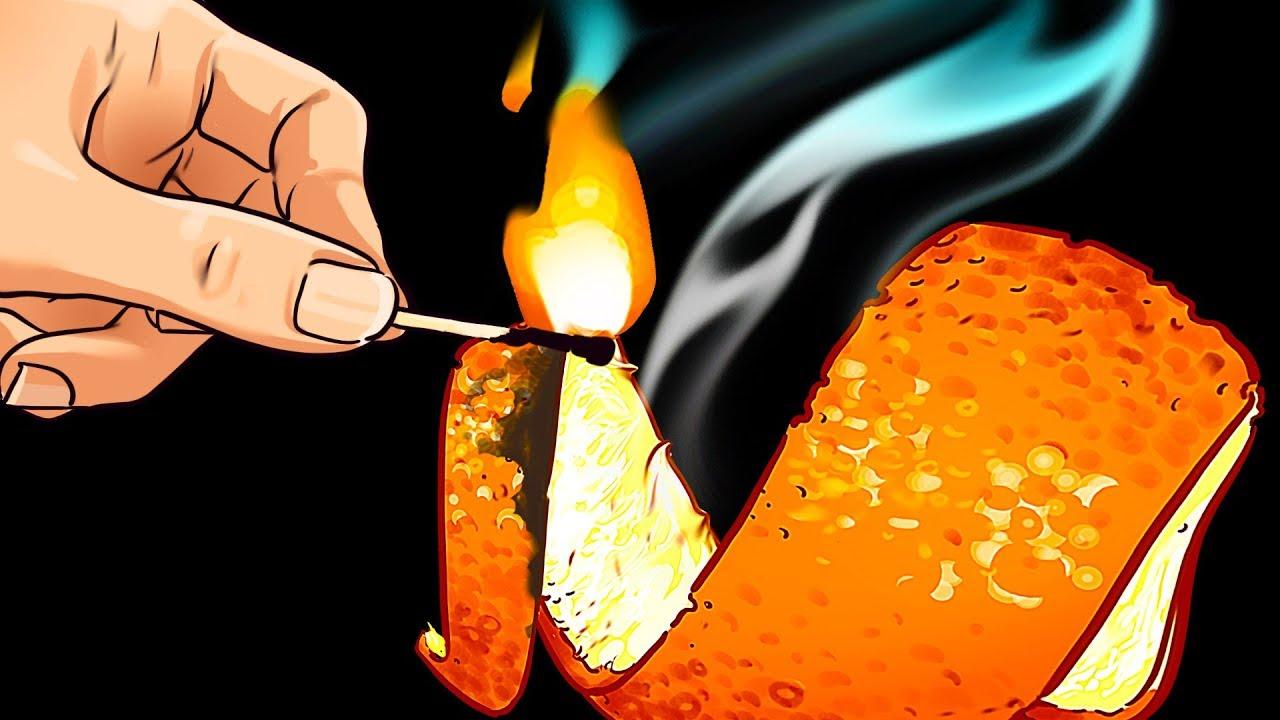 Подпалите цитрусовые