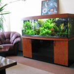 тумба аквариумная большая