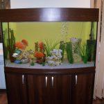 тумба аквариумная темная