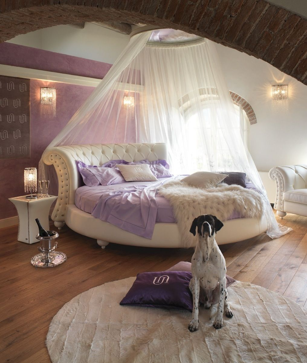 хелицерах фаланги картинки спален с круглыми кроватями фото это