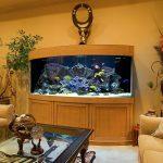 тумба под аквариум полукруглая