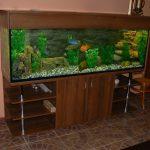 тумба под аквариум в дом