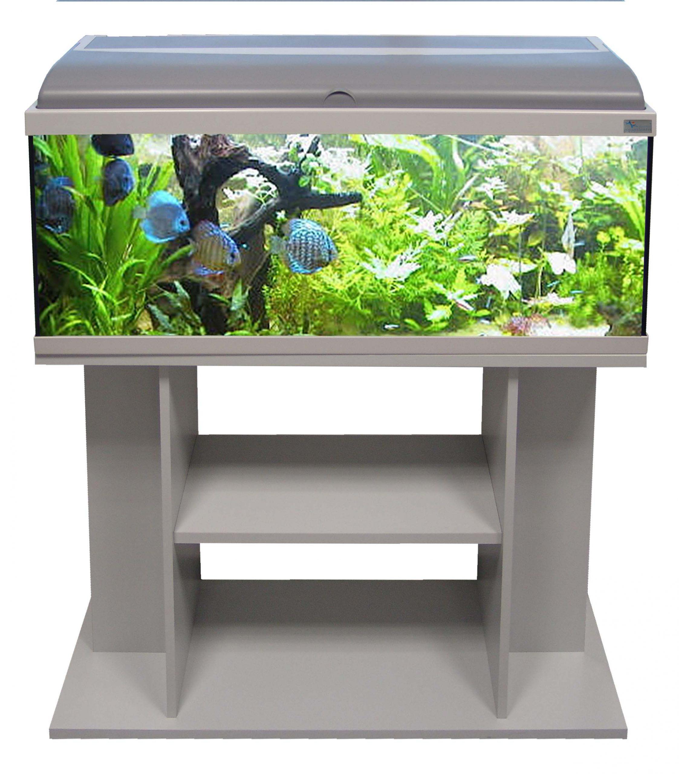 нормальное полки под аквариум фото цветов