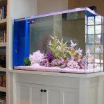 тумба под аквариум большая