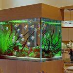 тумба под аквариум светлая