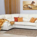 белый кожаный диван с леопардом